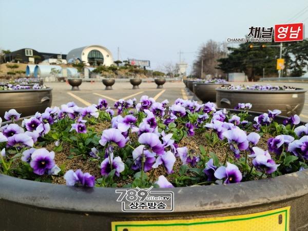[함창읍]아름다운 꽃길 만들다1.jpg