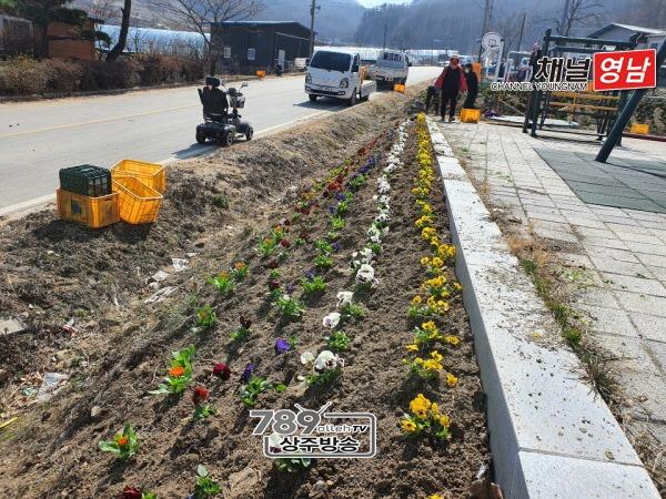 [화동면]평산리 봄 꽃모 식재.jpg