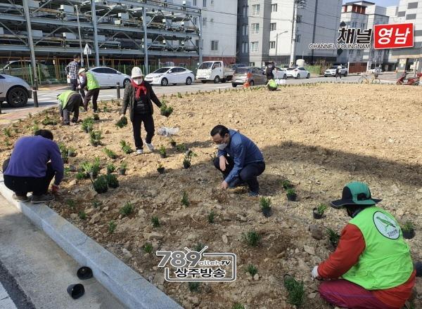 [신흥동]꽃밭으로 새롭게 태어나는 택지 공터.jpg