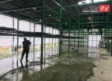 [상주]수확의 계절 맞아 곶감농사 준비 한창